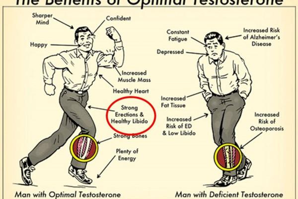 the-benetits-of-optimal-testosterone