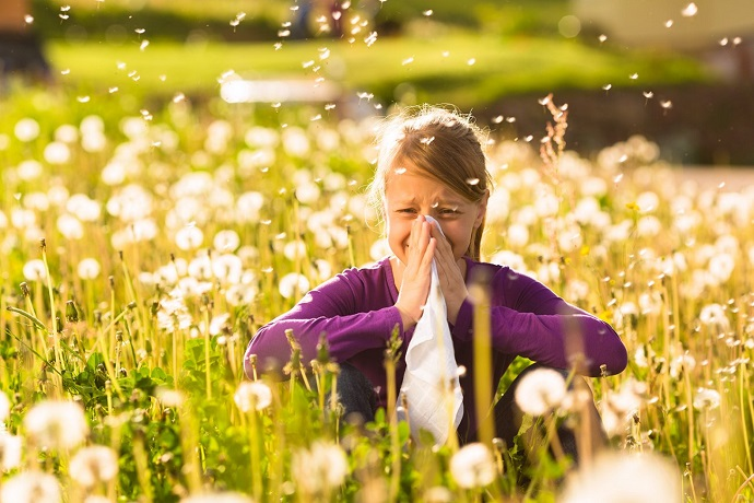 Finding the Right Allergy Medication for the Purpose of Relieving Hay Fever