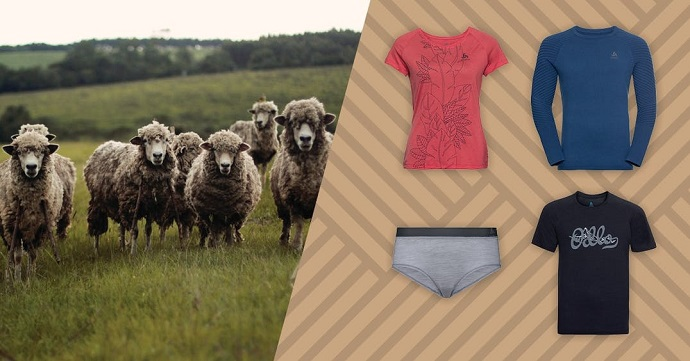 Merino wool is the main natural fibre