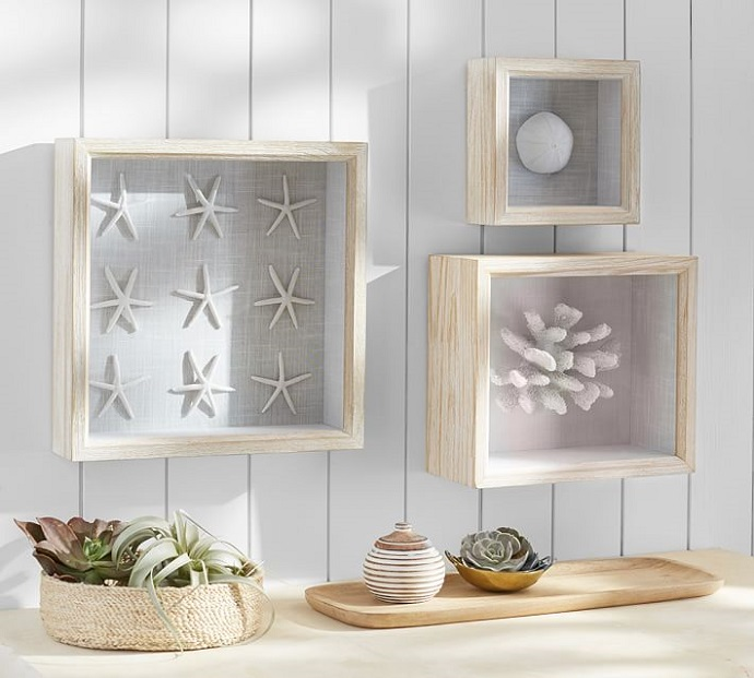 Coral shadow boxes