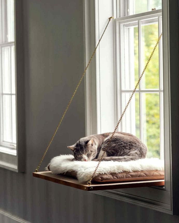 window perch beds