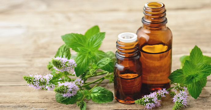 Peppermint-oil-image