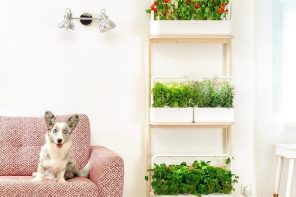 Purposeful Gardening: With Self Watering Pots It's Easy to Keep Your Garden Healthy & Hydrated