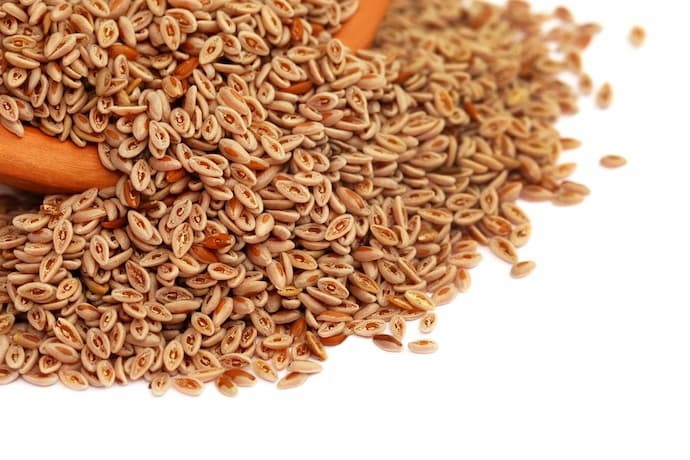 Psyllium is a solvent fibre that is primarily used as a soft bulk-forming laxative; it comes from the plant Plantago ovata that grows worldwide, however it is most common in India. Each Plantago ovata plant can produce up to 15,000 small, gel-coated seeds, from which the psyllium husk is derived.